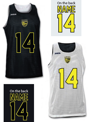 New Forest Vipers Reversible Pinnie
